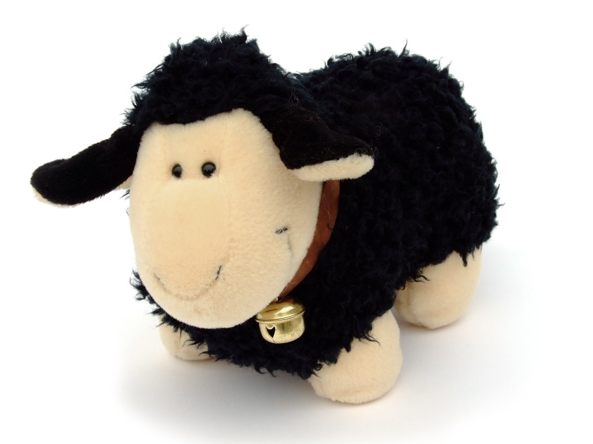 Baa Baa The Black Sheep